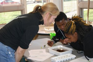 Bug testing with EPA (3)
