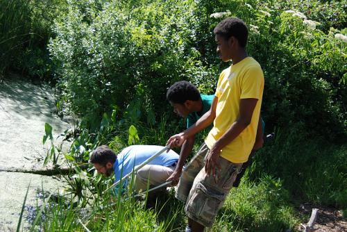 environmental charity