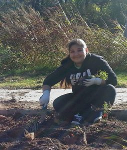 Karla-Planting